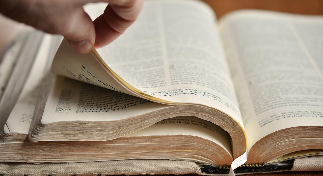 cual-es-la-mejor traduccion-de-la biblia-en-francés