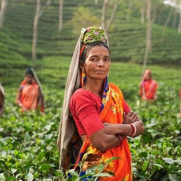 ¿Qué idioma se habla en la India? Idiomas nacionales